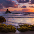 Golden Tides by Mike  Dawson