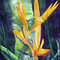 Golden Torch by Maritza Bermudez