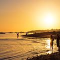 Golden Tropics Hot Beach Sun by James BO Insogna