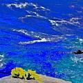 Golden Yarrow Rock Sea Point Lobos by Scott L Holtslander