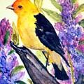 Goldfinch by Gail Kirtz