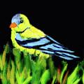 Goldfinch In The Garden by Miri Harvey