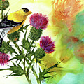 Goldfinch With Thistles by Sherry Shipley