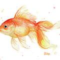 Goldfish Painting Watercolor by Olga Shvartsur