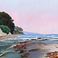 Goleta Beach Rushing Tide by Dorothy Nalls