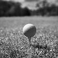 Golf Ball On The Tee by Joe Fox