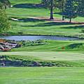 Golf Course by Liz Santie