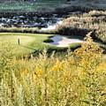 Golf - Green Peace by Jason Nicholas