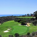 Golf Is Rough At Pelican Hill Resort by Natalie Ortiz