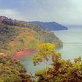 Golfo Dulce Costa Rica by Joan Carroll