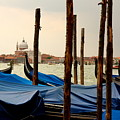 Gondolas And Poles In Venice by Michael Henderson