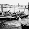 Gondolas By St Mark's by Christopher Maxum