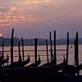 Gondolas In Venice At Sunrise by Michael Henderson