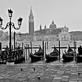 Gondolas Of San Marco Square by Frozen in Time Fine Art Photography