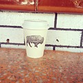 Good Coffee by Cara Poalillo
