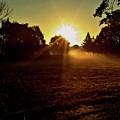 Good Morning 1 by John Feiser