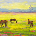 Good Morning Horses by Amy Welborn