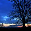 Good Morning Sunshine by Damijana Cermelj