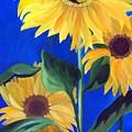 Good Morning Sunshine by Susan Dehlinger