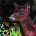 Good Night Deer  by Paul Sutcliffe