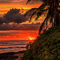 Good Night Hawaii by Brittney Robles