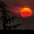 Good Night Sun by Wolfgang Stocker