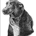 Good Old Charlie by Jack Pumphrey