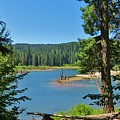 Goose Lake by Mel Manning