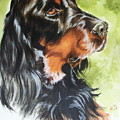 Gordon Setter by Barbara Keith