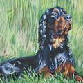 Gordon Setter In The Grass by Lee Ann Shepard