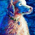 Gorge Dog by Lynee Sapere