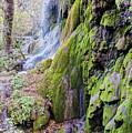 Gorman Falls At Colorado State Park II - San Saba Texas Hill Country by Silvio Ligutti