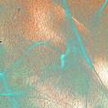 Gossamer Abstract by Lenore Senior