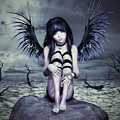 Goth Fairy by Alicia Hollinger