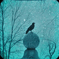Goth Snow Globe by Gothicrow Images