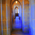 Gothic Arch Hall by Jost Houk