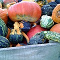 Gourds In A Crate by Emily Kelley