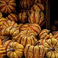 Gourds by Robert Ullmann
