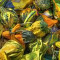 Gourds by Sam Davis Johnson
