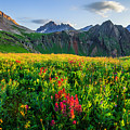 Governor's Basin In Bloom by Wick Smith
