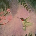 Graceful Hummingbird by Jessie Lofland