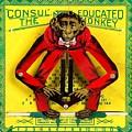 Graduation Monkey by Marianne Dow
