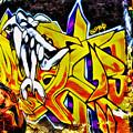 Graffiti Alley I by Ray Akey
