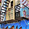 Graffiti Fire by Cate Franklyn