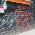 Graffiti Pigeon by Amy Stark