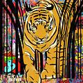 Graffiti Tiger by Sassan Filsoof