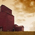 Grain Elevator by Kelly Redinger