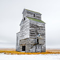 Grain Elevator On White by Todd Klassy
