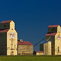 Grain Elevators by Rod Jellison