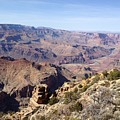 Grand Canyon 1 by Charla Dury